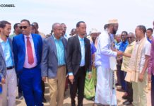 FIQI Abdinaasir Mohamud Mire Gallery
